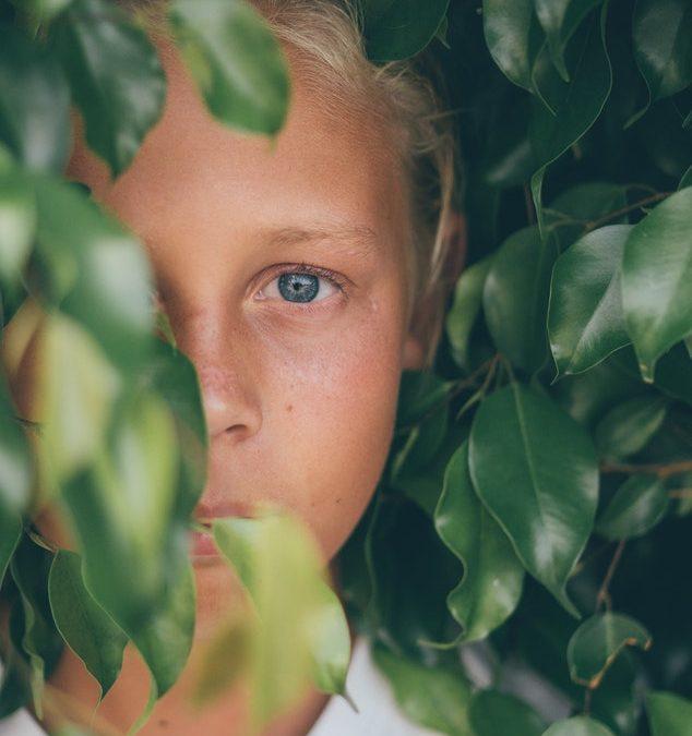 La bambina che sale sugli alberi